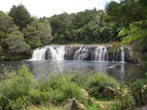 Waterfall walk near Kerikeri